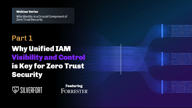 Unified IAM Visibility and Control and Zero Trust Security